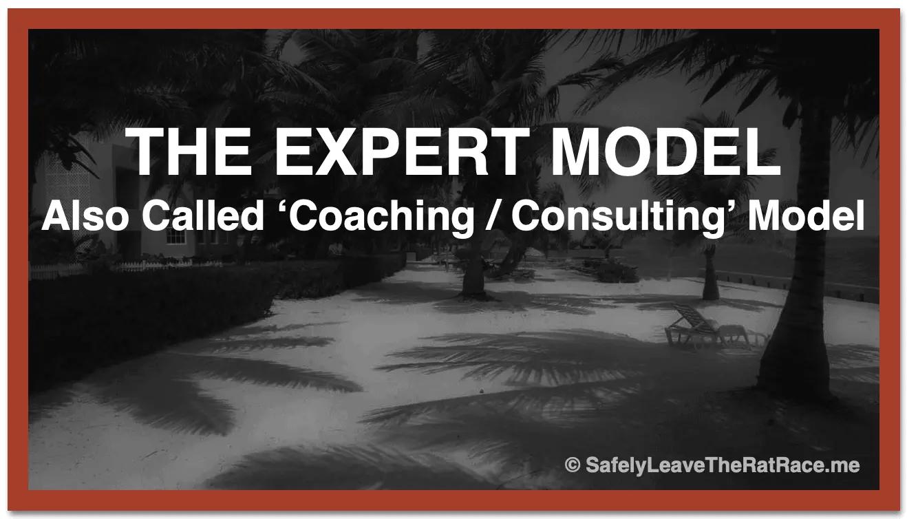 Expert/Coaching/Consultiing Model